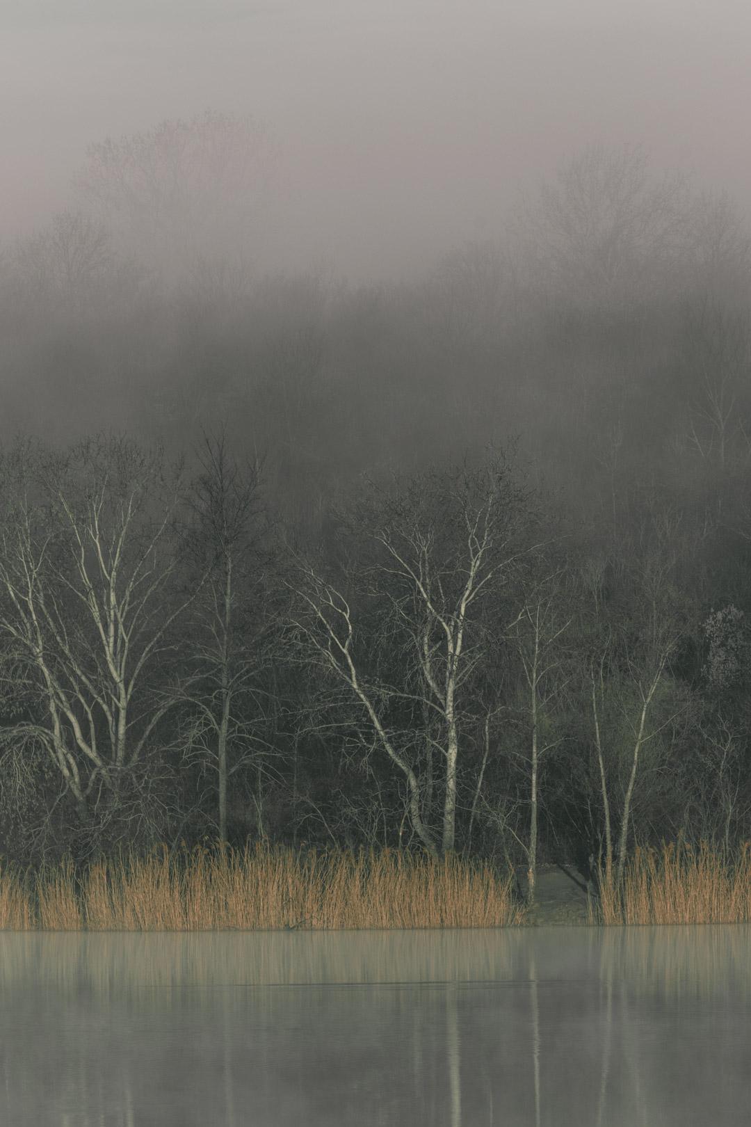 Erholungsgebeit Wienerberg in morning fog, Vienna, Austria